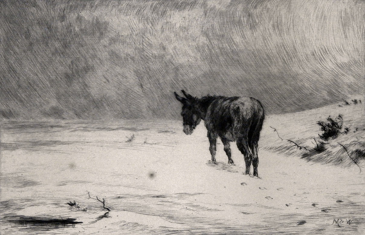 """0000.081 