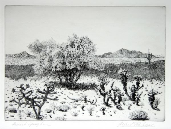 1986.034 | Alfred Rudolph | DESERT SPRINGTIME | etching on paper | 7.75 x 10.75"