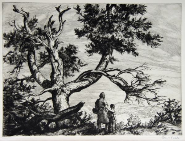 1986.038 | Sam Thal | PICNIC PLACE | etching | 8.75 x 11.875"