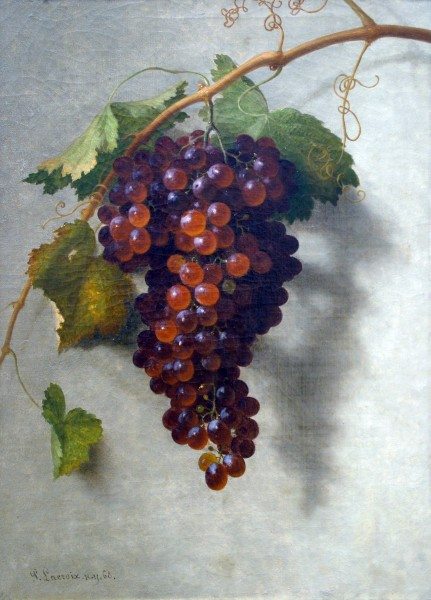Paul Lacroix | STILL LIFE OF RED GRAPES | oil on canvas | 20 x 14"