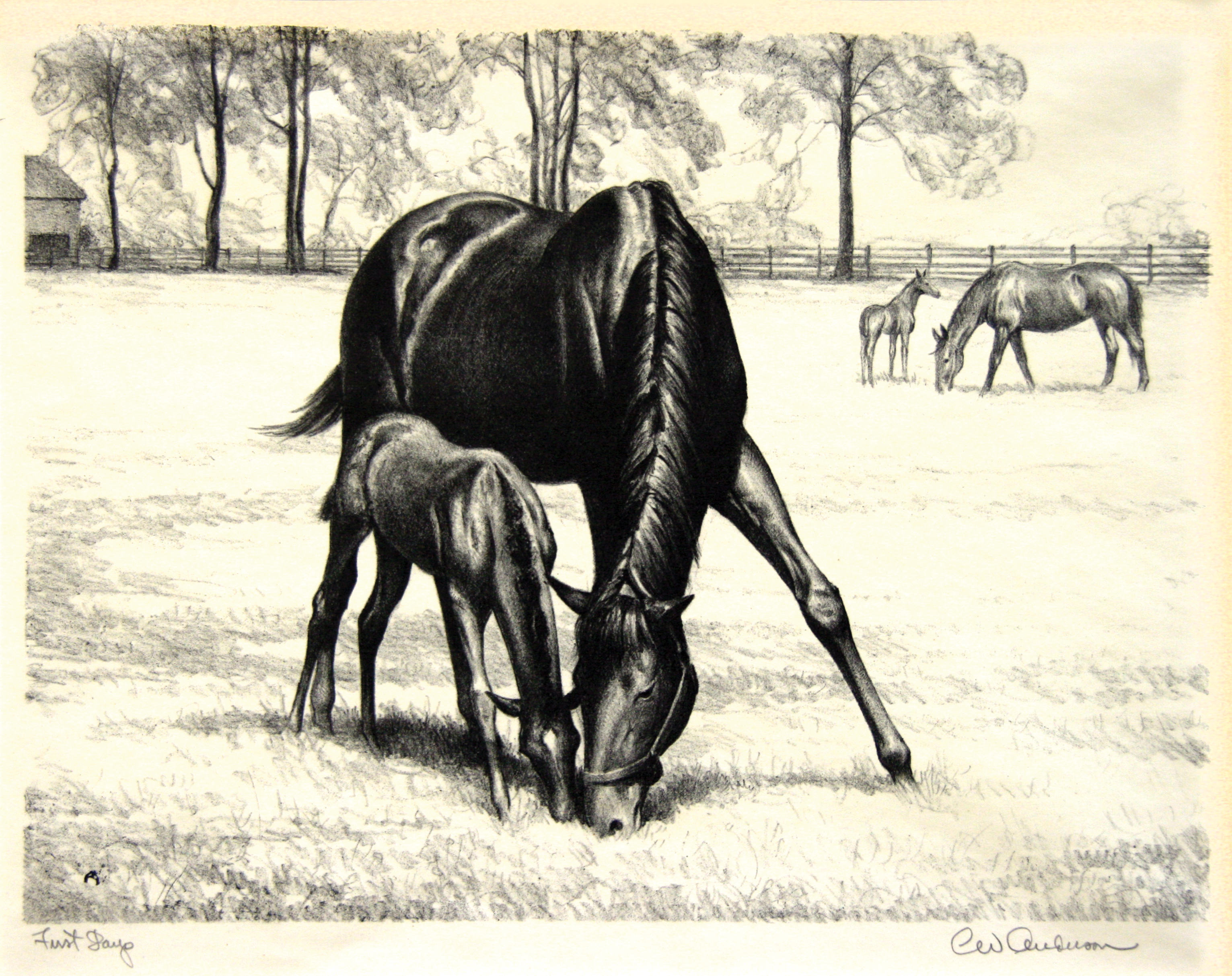 2005.005 | Clarence William Anderson | FIRST DAYS | lithograph | 8-1/2 x 11-1/2"