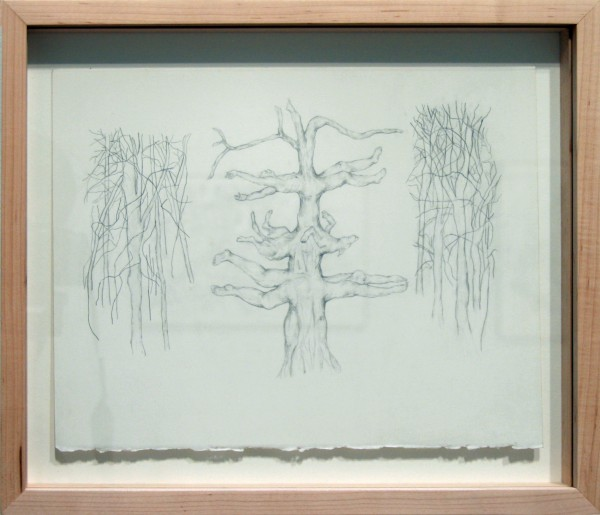 Clara Crockett | IN THE FOREST | graphite on Arches paper | 2011