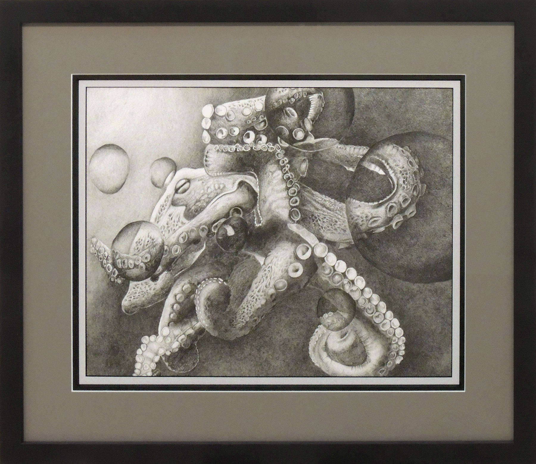 Amanda Adams | OCTOPUS | graphite | Honorable Mention
