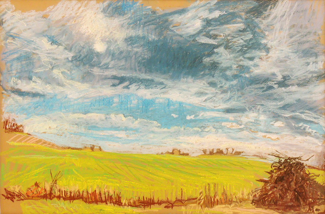 "Amy MacLennan   FIELD TRASH EARLY WINTER - ILLINOIS   Pastel on paper   18 x 25""   2016"