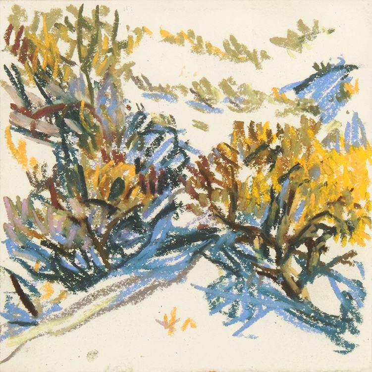 "Amy MacLennan   WYOMING SERIES - RAVINE   Pastel on paper   6 x 6""   2011"