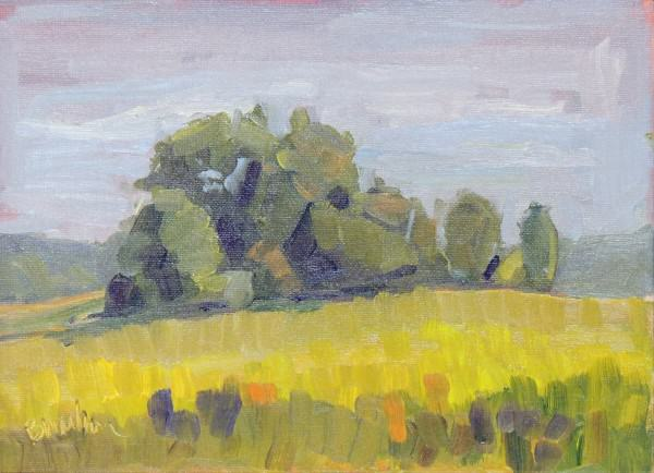 Barb Walker | SPRINGFIELD PRAIRIE LATE AFTERNOON | oil | 9 x 12""