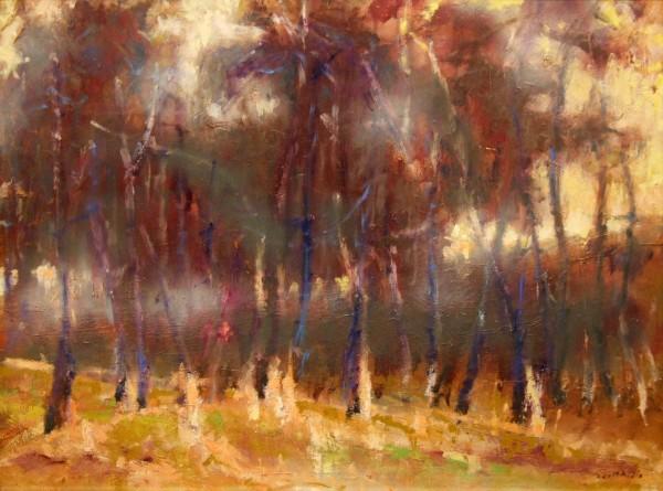 Scott Addis | Landscapes