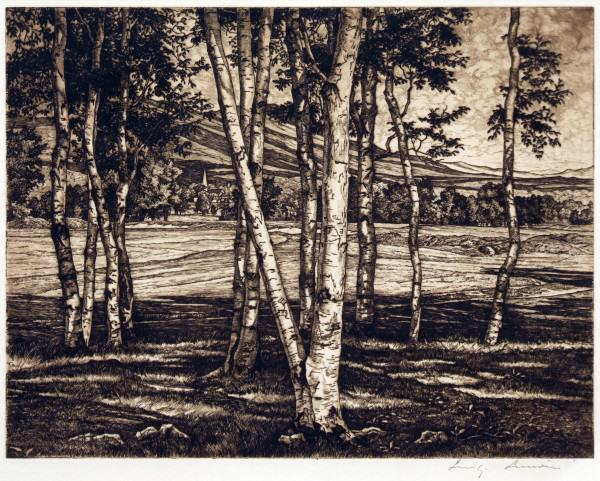 2005.005.58 | Luigi Lucioni | EDGE OF THE BIRCHES | etching | Donated by Ms. Susan Wayne and Miss Leslie Wayne Loftus