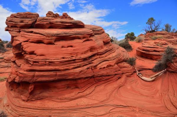 Dave Levingston | KAT AT SOUTH COYOTE BUTTES | photography
