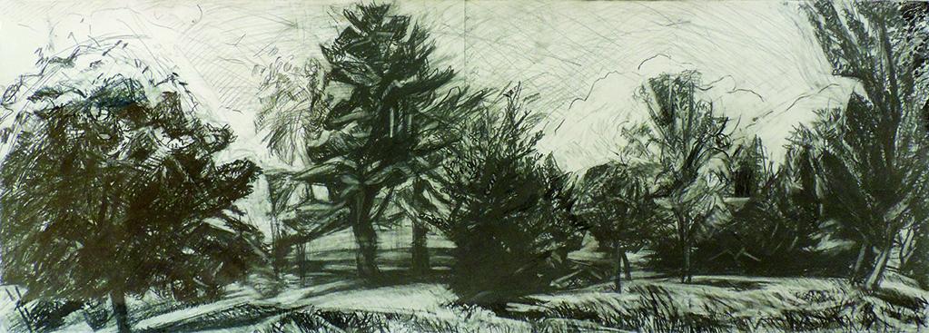 "Deborah Chlebek | ELLIS DRAWING | pencil | 18 x 48"" | 2015"