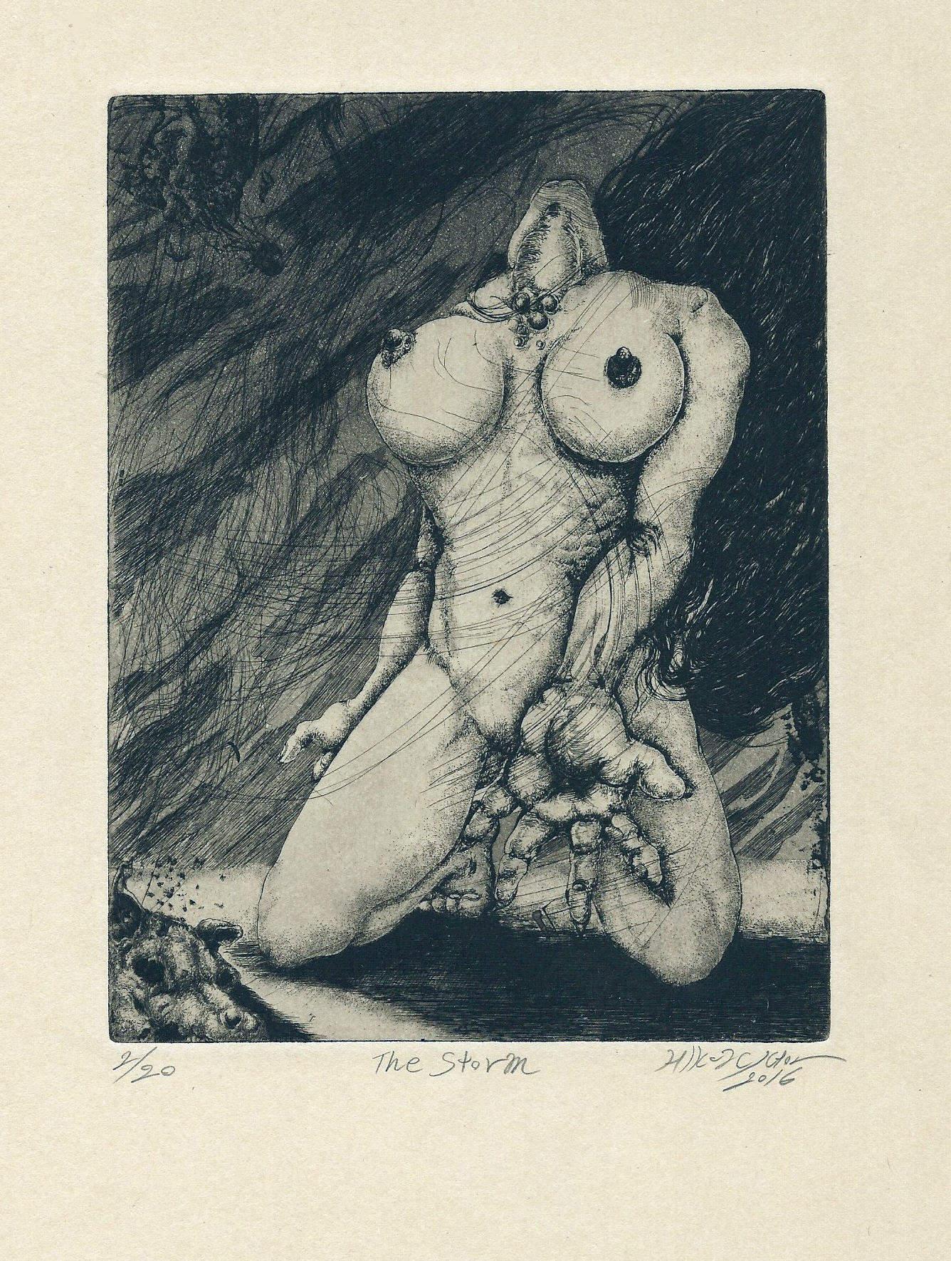 Hikaru Suto | THE STORM | etching, aquatint | 7x5 | 2016
