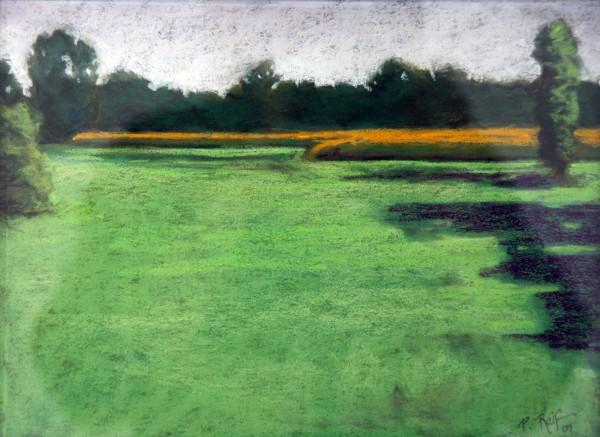 P. Rief | 2007