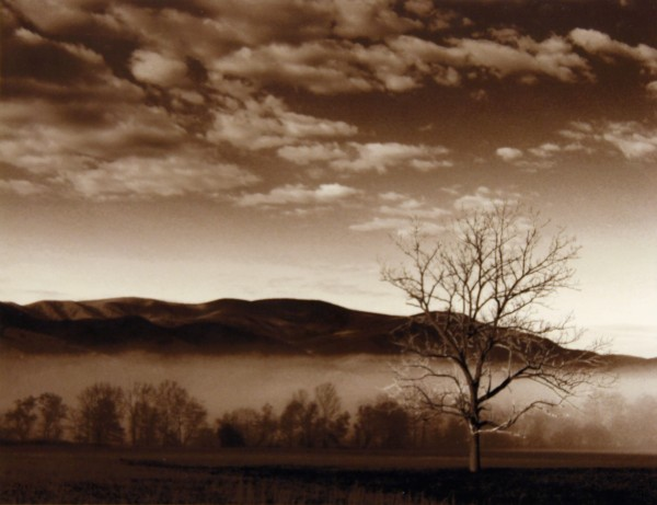 Terry Glass | SMOKY MOUNTAIN MORNING | photograph
