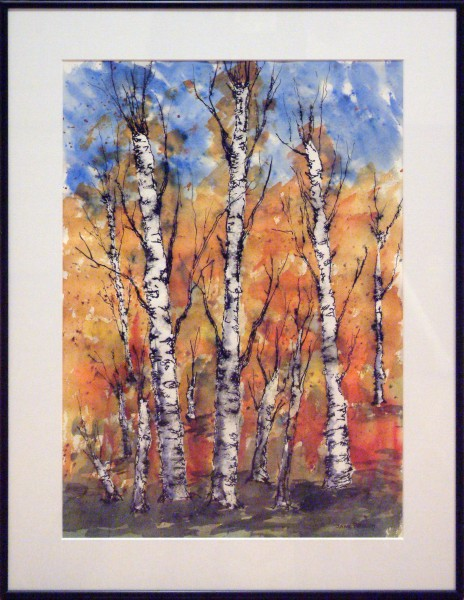 Jane Phillippi | BIRCH TREES | transparent watercolor | 2013