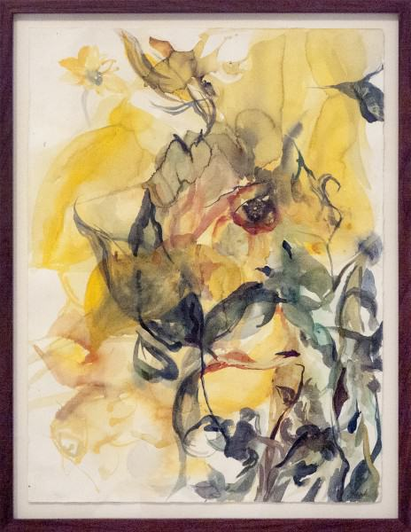 Jennifer	Haack | THE HISTORY OF THE DAFFODIL | watercolor on paper
