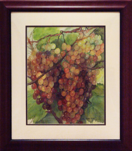 Kam Sai Ophelia Tan | GRAPES ON VINES | transparent watercolor | 2013