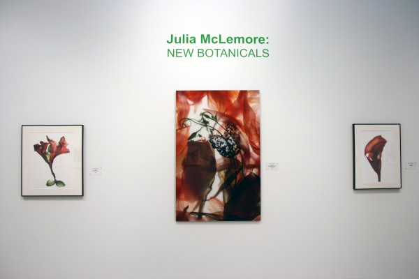 Julia K. McLemore | New Botanicals