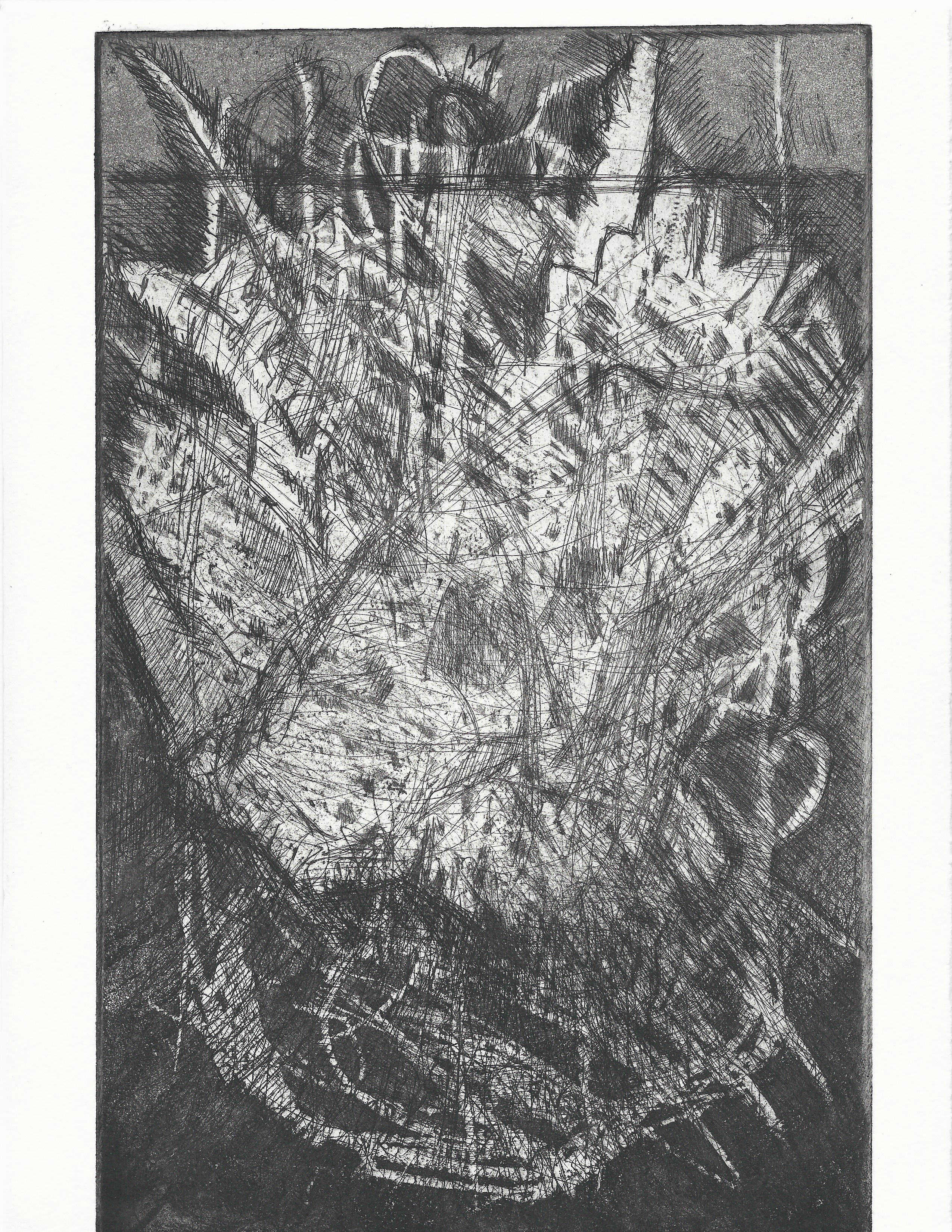 Micah Zavacky | ROOT ROT: FLOODED YET FLOATING | intaglio | 11x7 | 2016