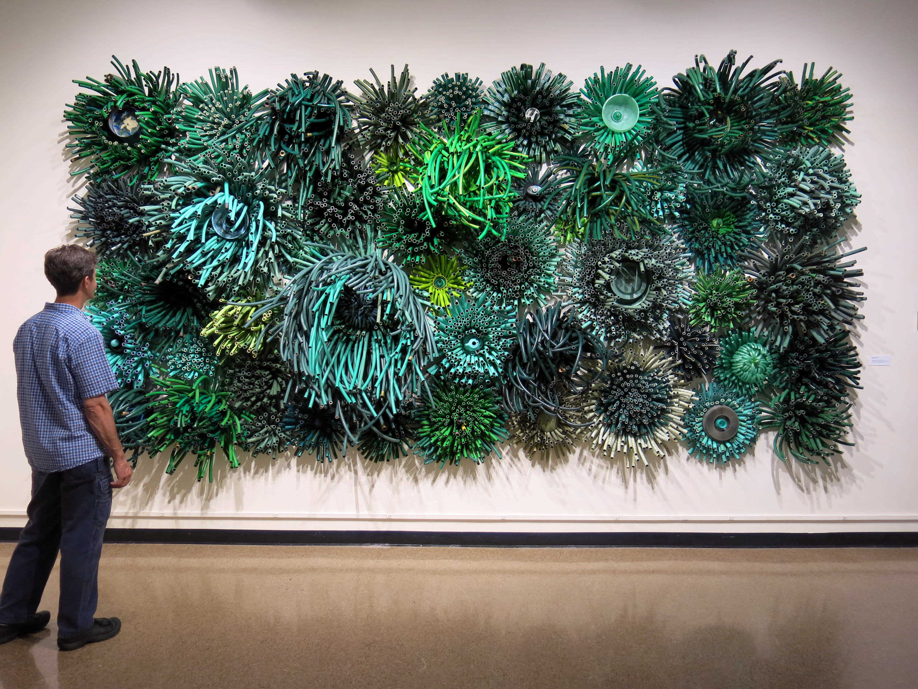 Michelle Stitzlein | JOVIBARBA - FYNBOS SERIES | garden hose mini blinds, wire, cable, plastic... | 96 x 192 x 18"