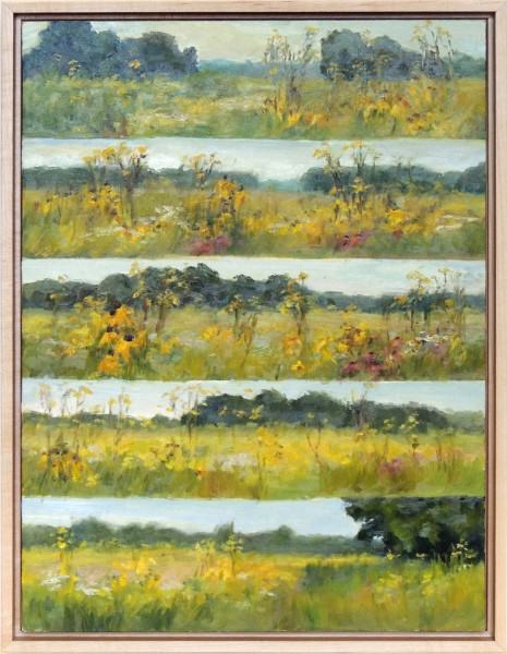 """Michelle Walker   SPRINGFIELD BOG PANORAMIC FROM EAST TO WEST FIELD NOTES   oil   12 x 16"""""""