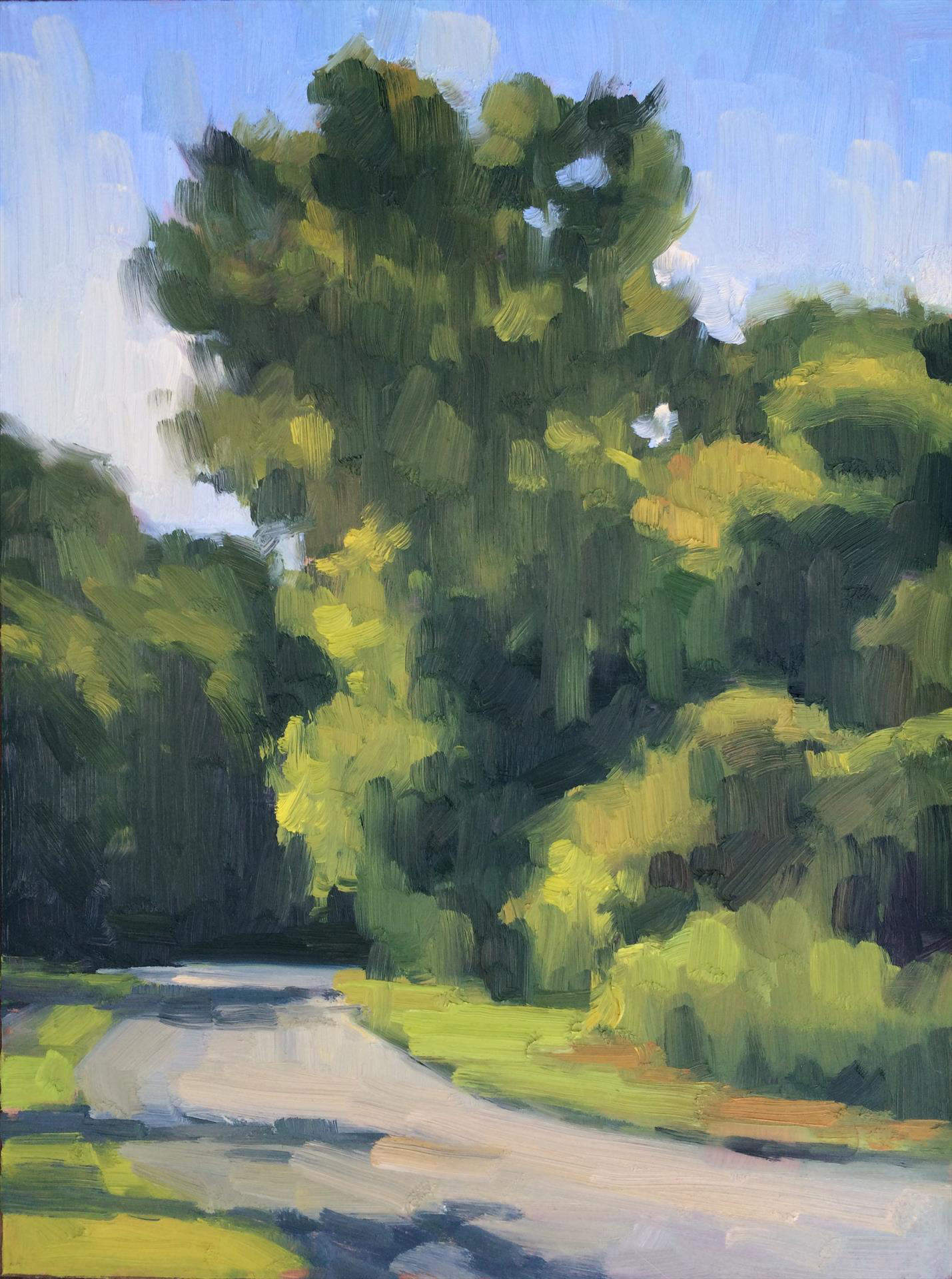 Ann Grimaldi | WINDING ROAD AT CAESARS CREEK | oil | frame size 17x20