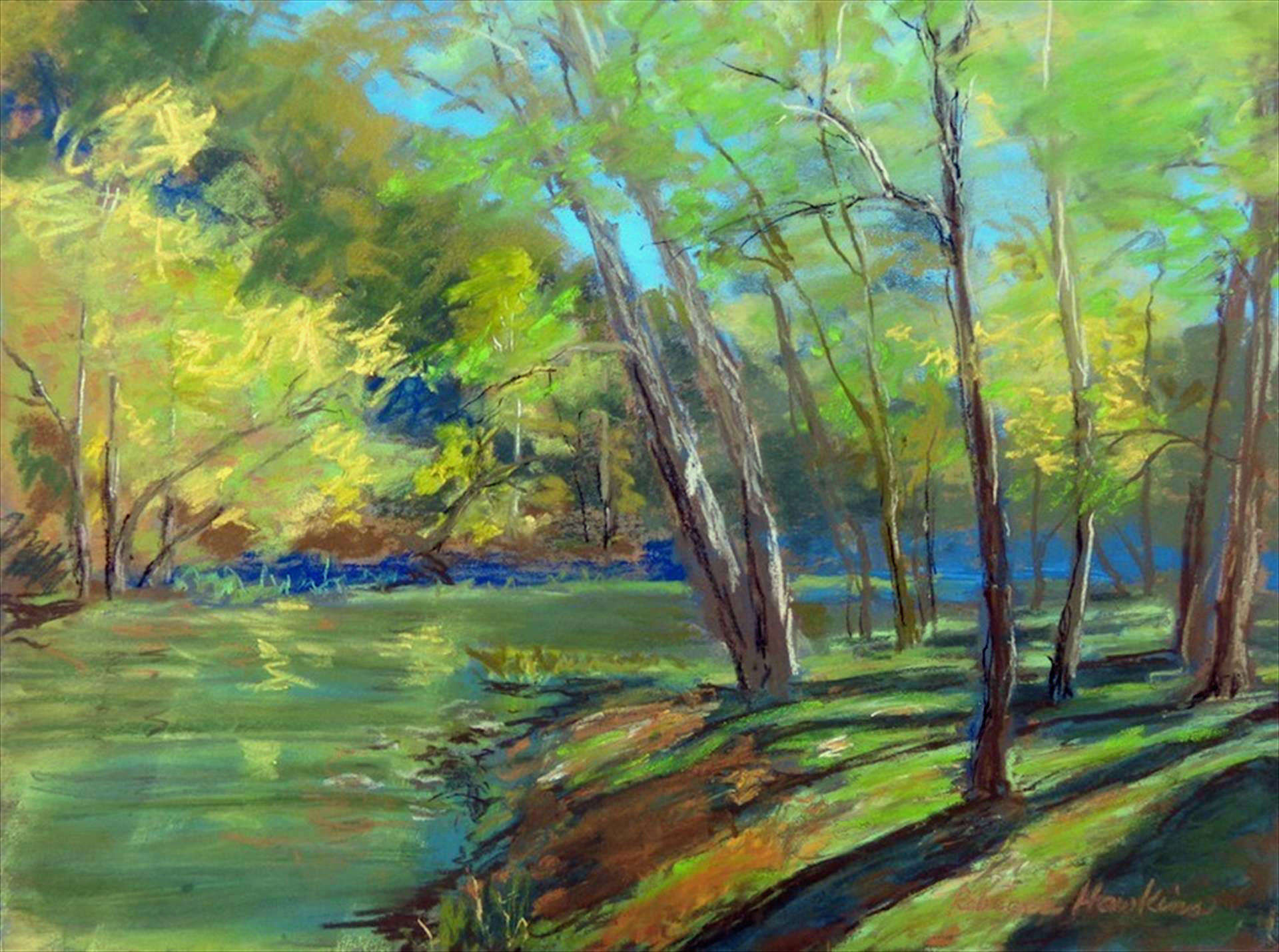 Becky Hawkins | BEAVER CREEK STATE PARK, AFTERNOON SHADOWS | soft pastel | frame size 17x20