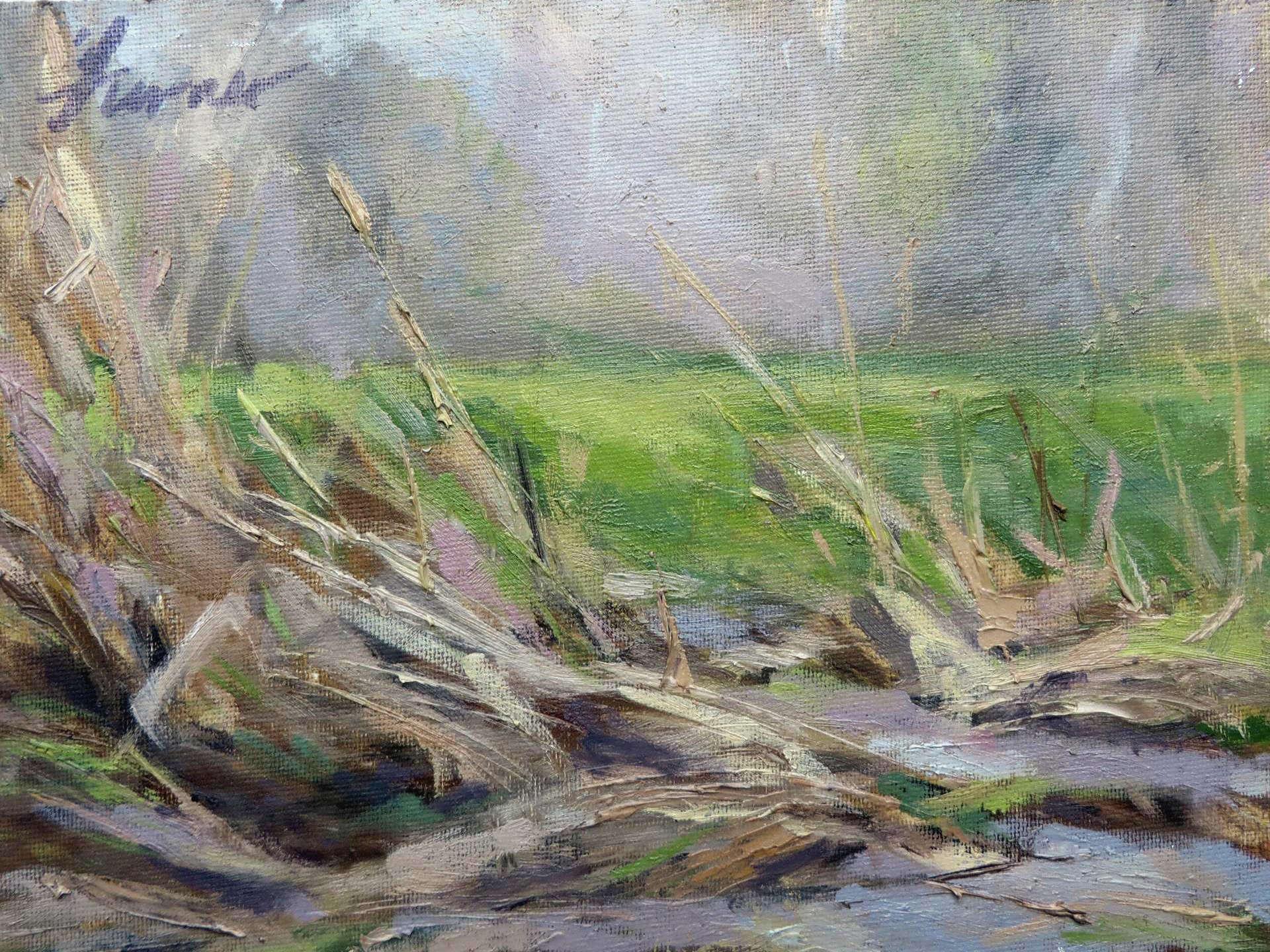 Bridgette Turner | SPRING THAW – WHETSTONE PARK PRAIRIE | oil | frame size 12x14