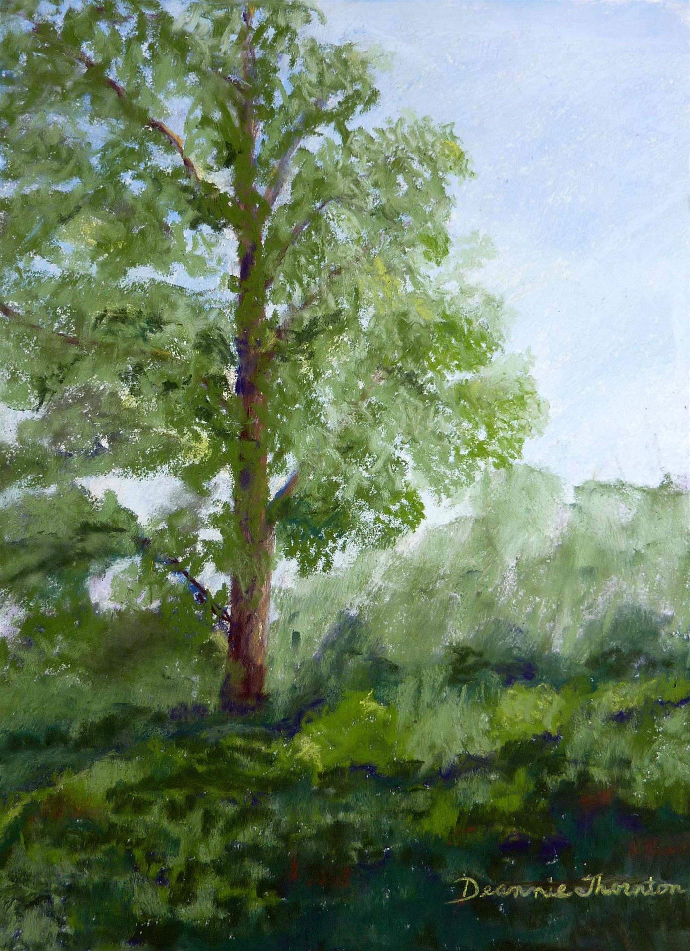 Deannie Thornton | SERENE | soft pastel | 9x12