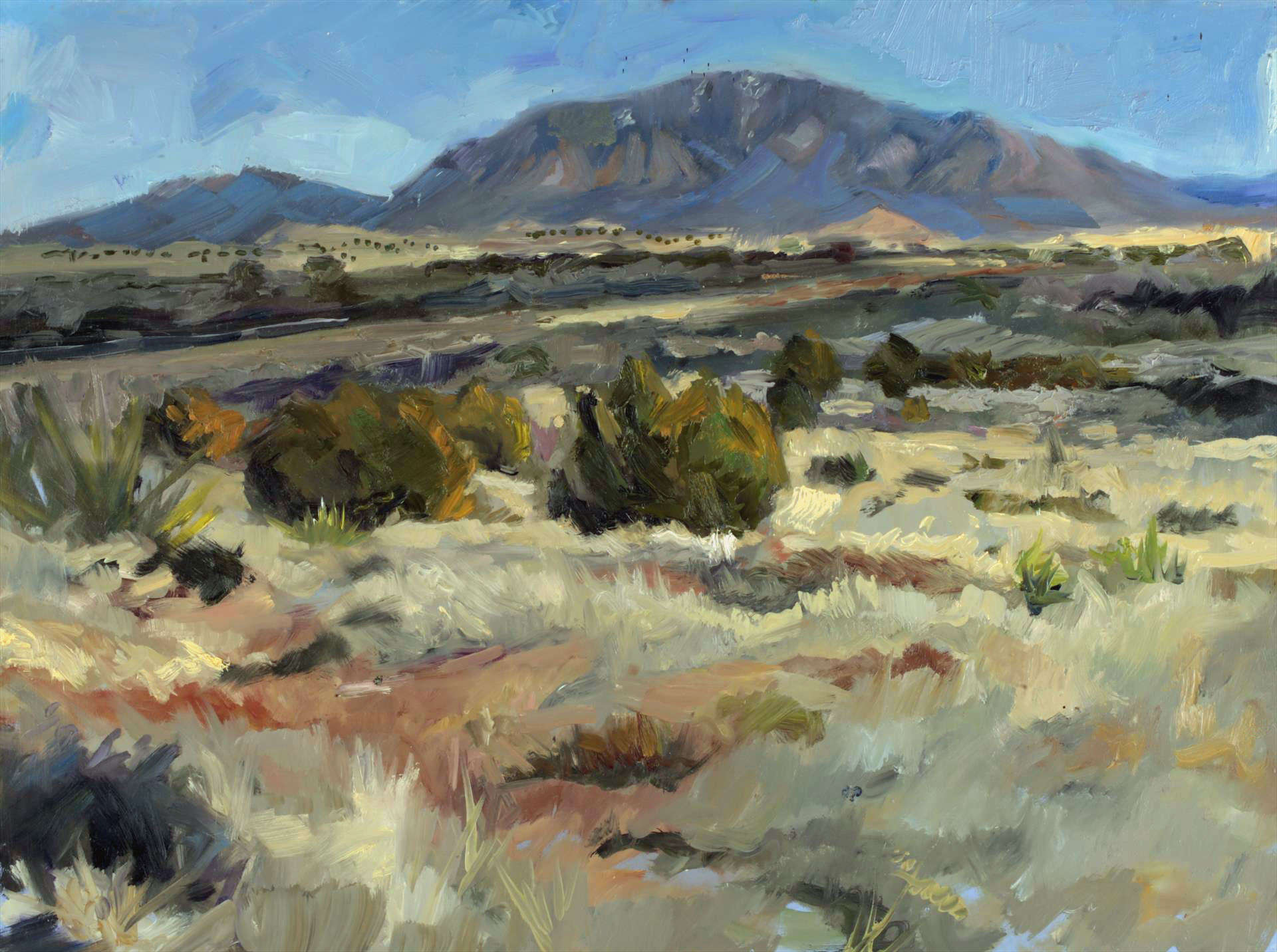 Karen LaValley |  VALLEY OF FIRES CARRIZOZO, NEW MEXICO 1 | oil | frame size 21x27