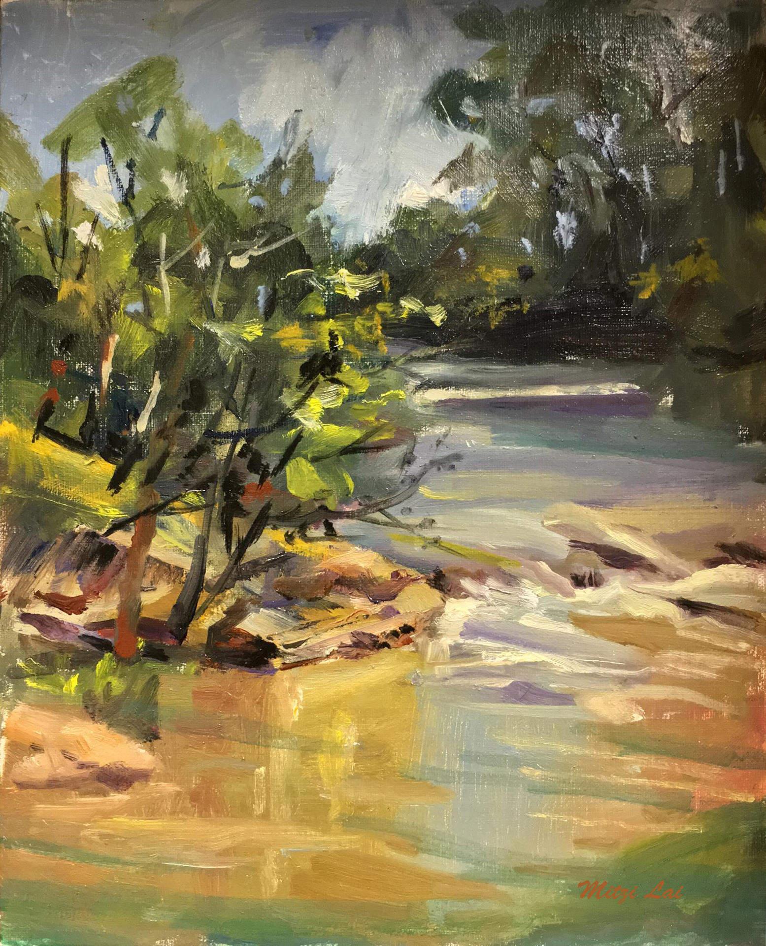 Mitzi Lai | CUYAHOGA RIVER | oil | frame size 14x16