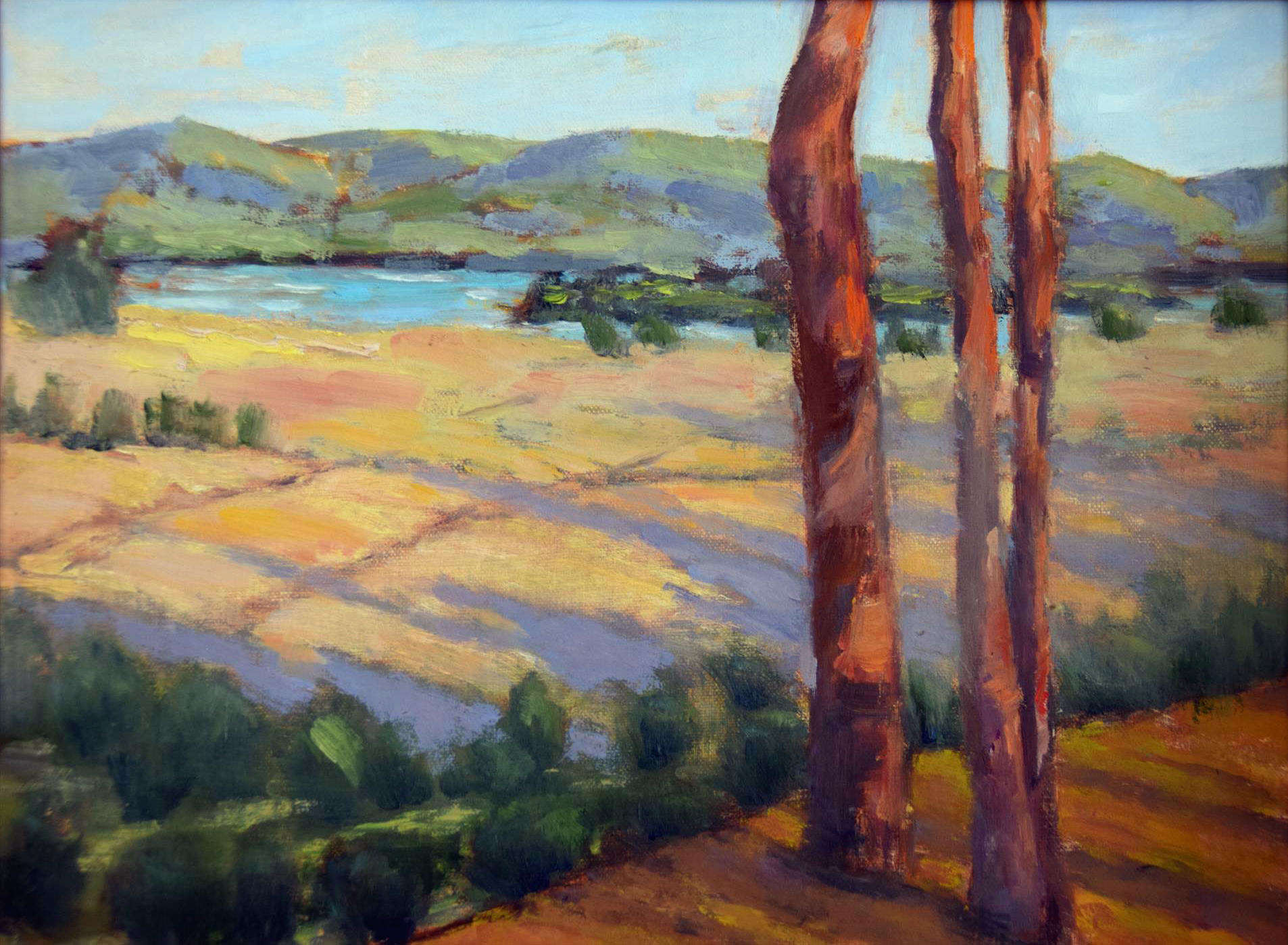 Tamar Rudavsky | SUNRISE AT TOMALES BAY, POINT REYES NATIONAL PARK | oil | frame size 11x14