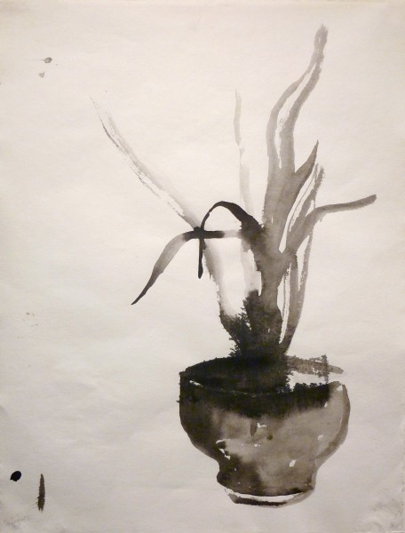 """Larry Shineman   ORCHID   22"""" x 18""""   sumi ink"""