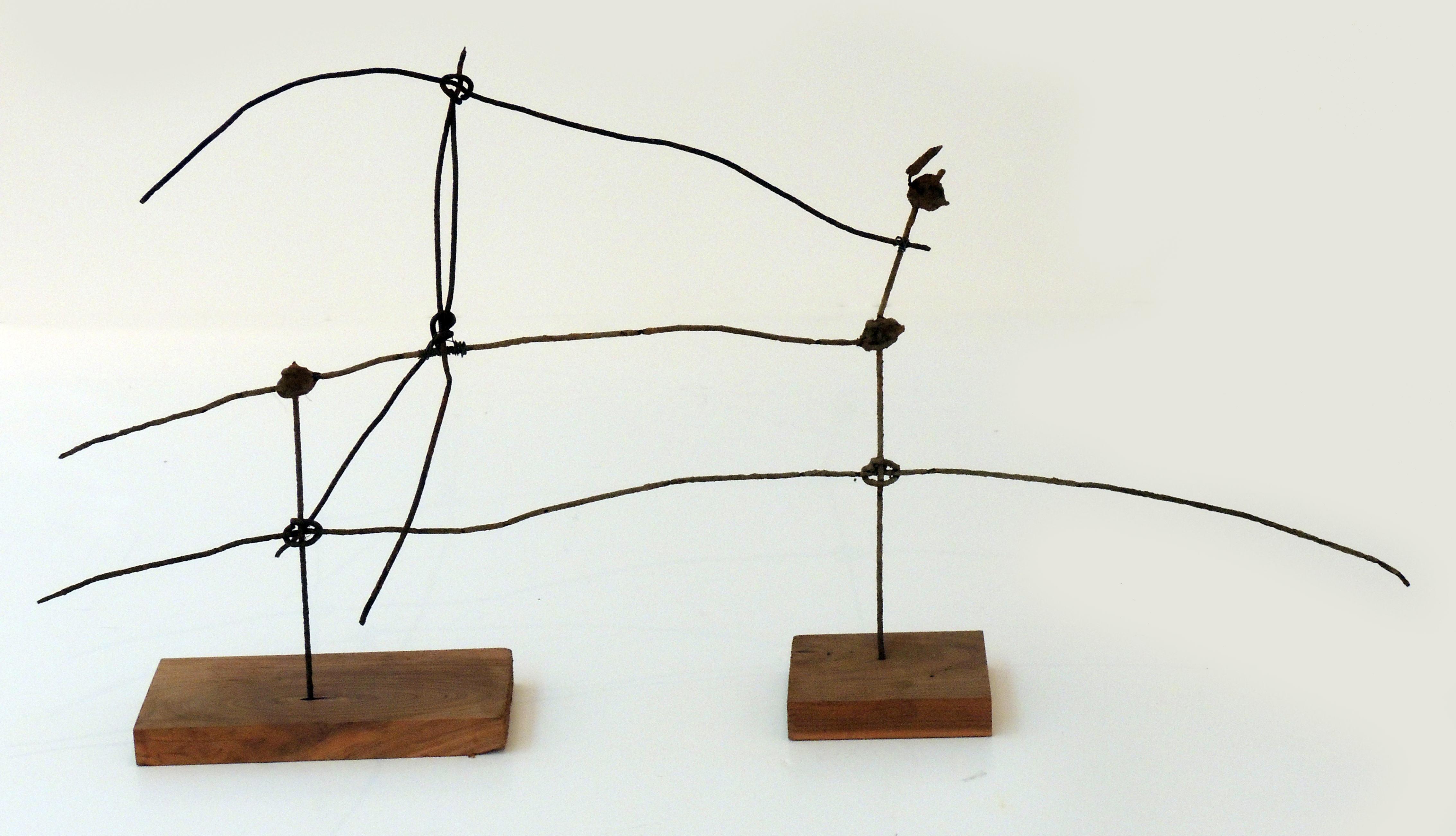 Richard Zopf | THE LAST WILD COWBOY | Iron wire