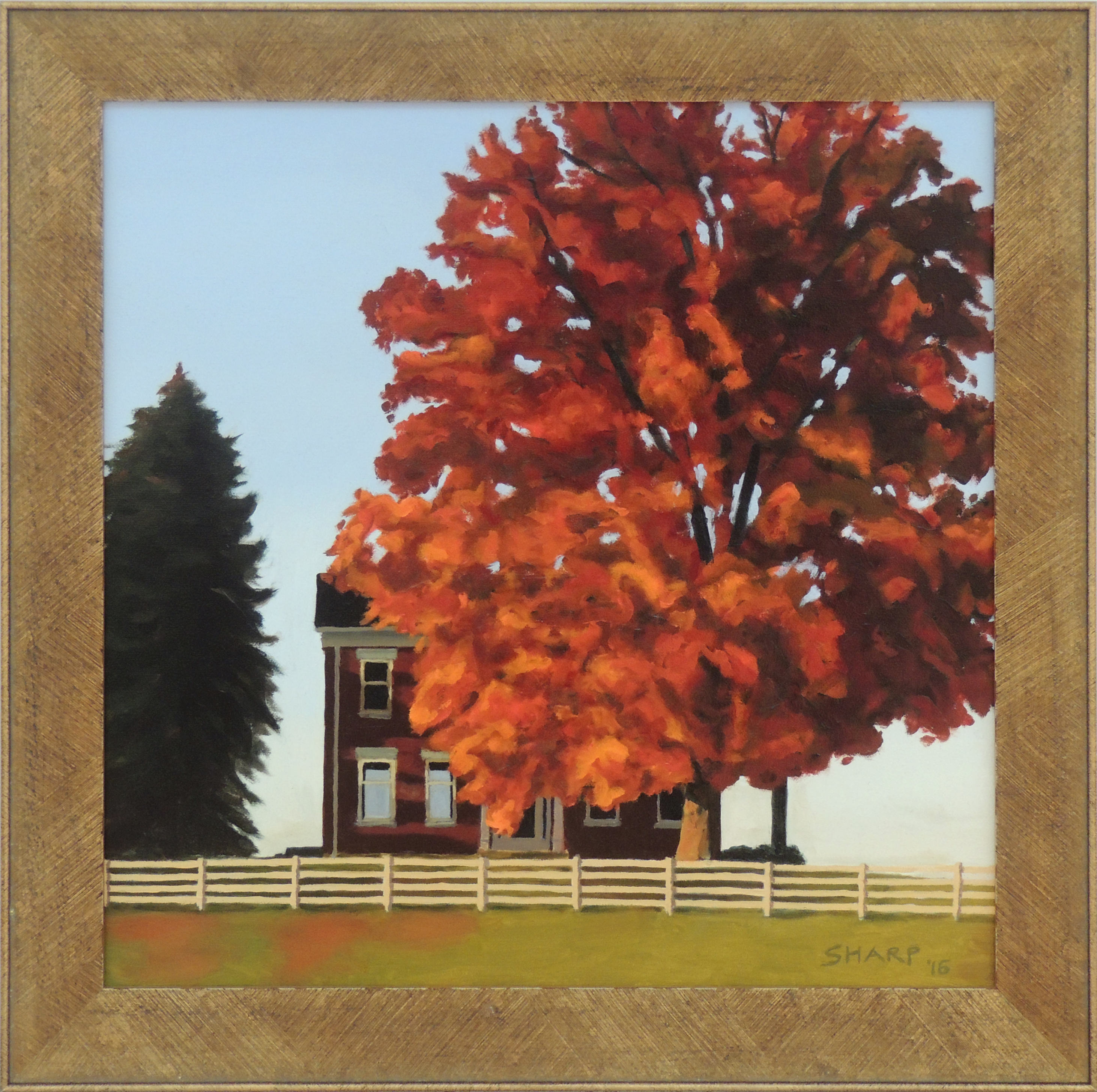 Stephen Sharp | NOVEMBER MAPLE | Oil on Canvas